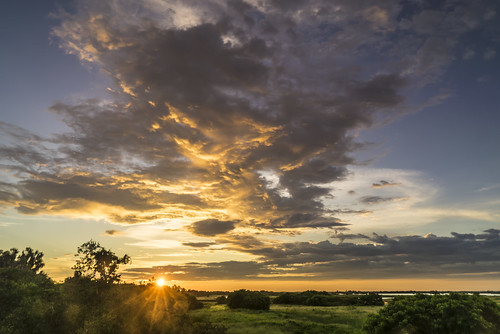 sky grass clouds sunrise us unitedstates florida palmetto landscapephotography manateecounty sonyalpha