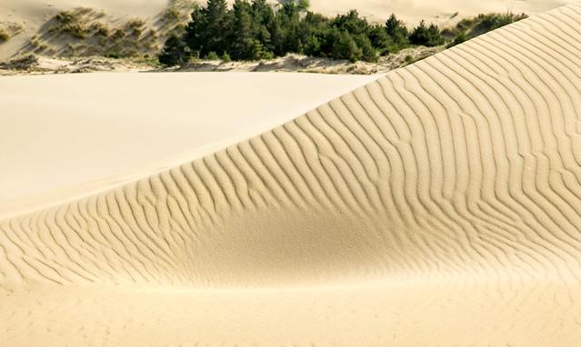 Sand dune pattern.jpg
