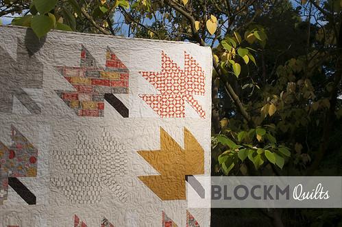 Detail of the blocks in lovely sun light.