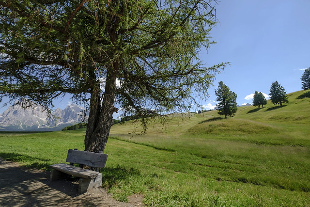 Alto Adige (Italy) - Alpe di Siusi