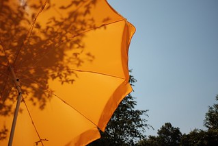 umbrella | by Marco Hamersma