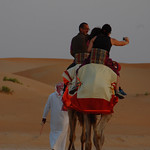 Viajefilos en el desierto de Abu Dhabi 10