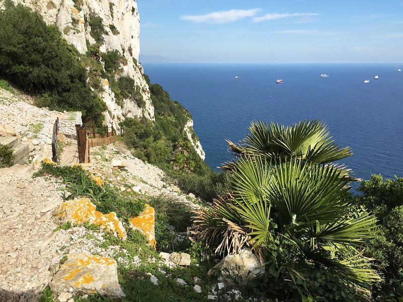 Gibraltar 2015/16