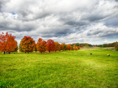 new york autumn trees newyork storm art fall leaves landscape king outdoor meadow places center foliage stormkingartcenter