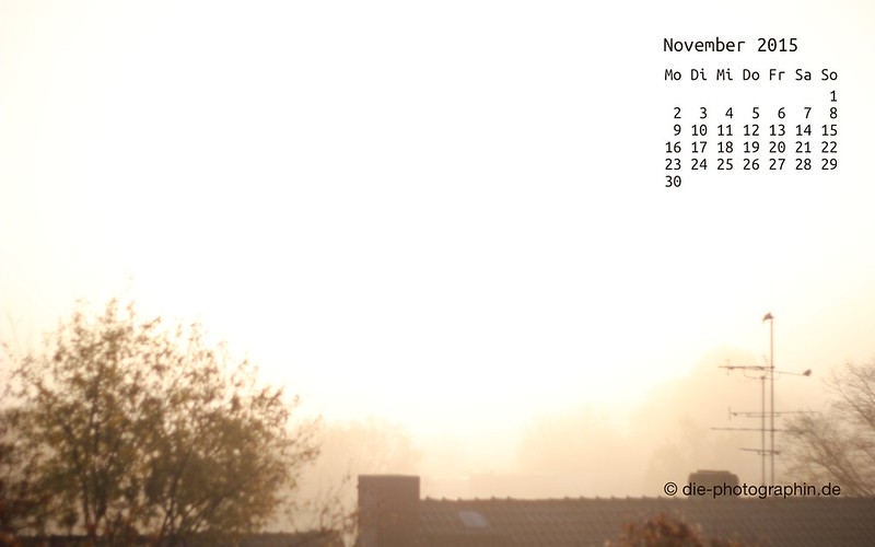 nebel_november_kalender_die-photographin