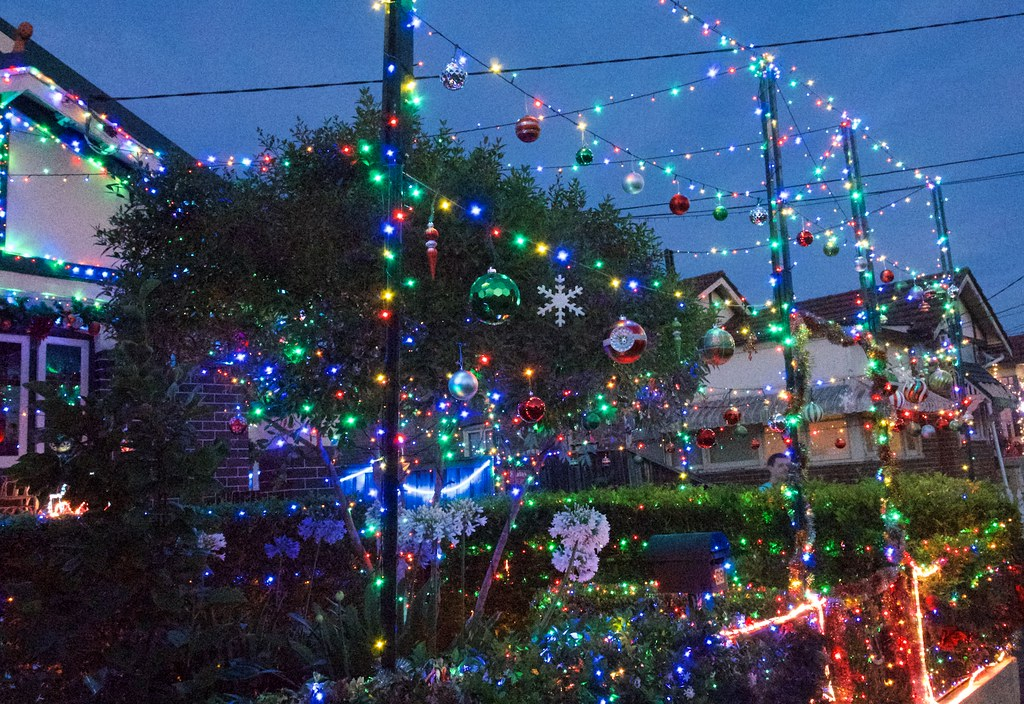Can never Have Too Many Christmas Lights