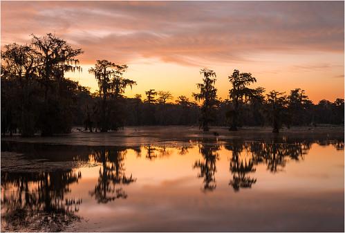 trees sky usa lake reflection nature clouds sunrise landscape dawn reflecting nikon louisiana bayou swamp spanishmoss wetlands cypress thesouth deepsouth lakemartin breauxbridge afs24120mmf4gvr d800e
