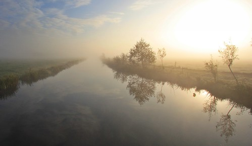 mist dew morning sunlight sunshine sunrise water polder efs1022mm wideangle trees netherlands sky reflections grass