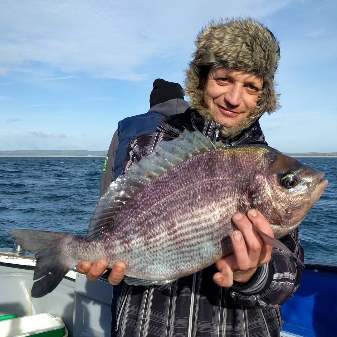 It has finally happened. Marius Ciocan has beaten the 4 year old Amarisa Black Bream record held by owner Ron Brown. This Bream weighed in at 4lb 11oz and will undoubtedly take the £100 prize money for Biggest Black Bream of 2016 on #amarisaweymouth
