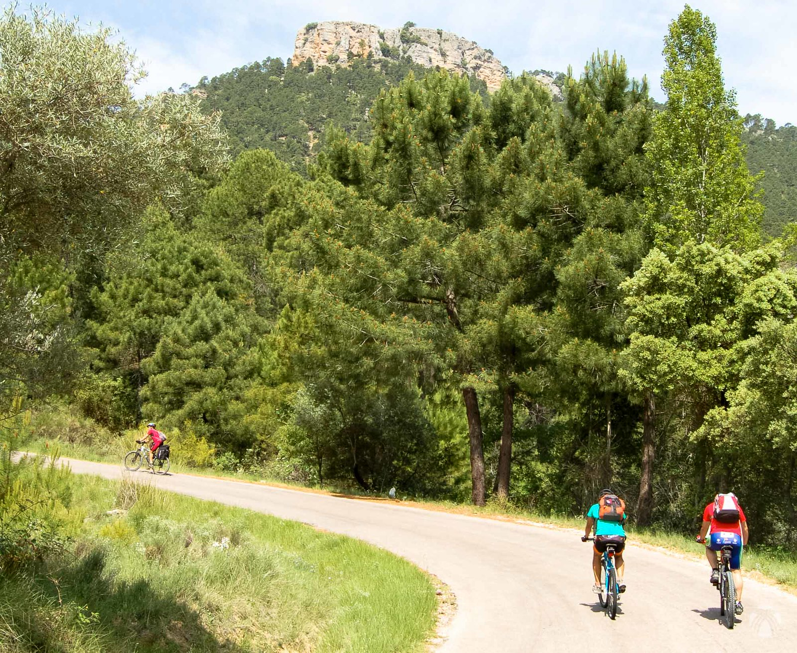 Arriba el cerro Bucentaina