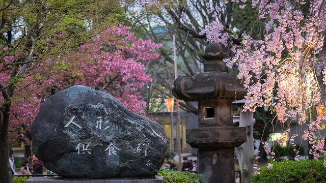 ueno park, tokyo-41.jpg