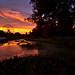 Fair Park Sunrise by Justin Terveen