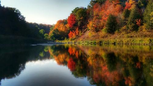 reflection mapleleaves creek still calm fall autumn bliss vista landscape seasonal canada toronto scarborough