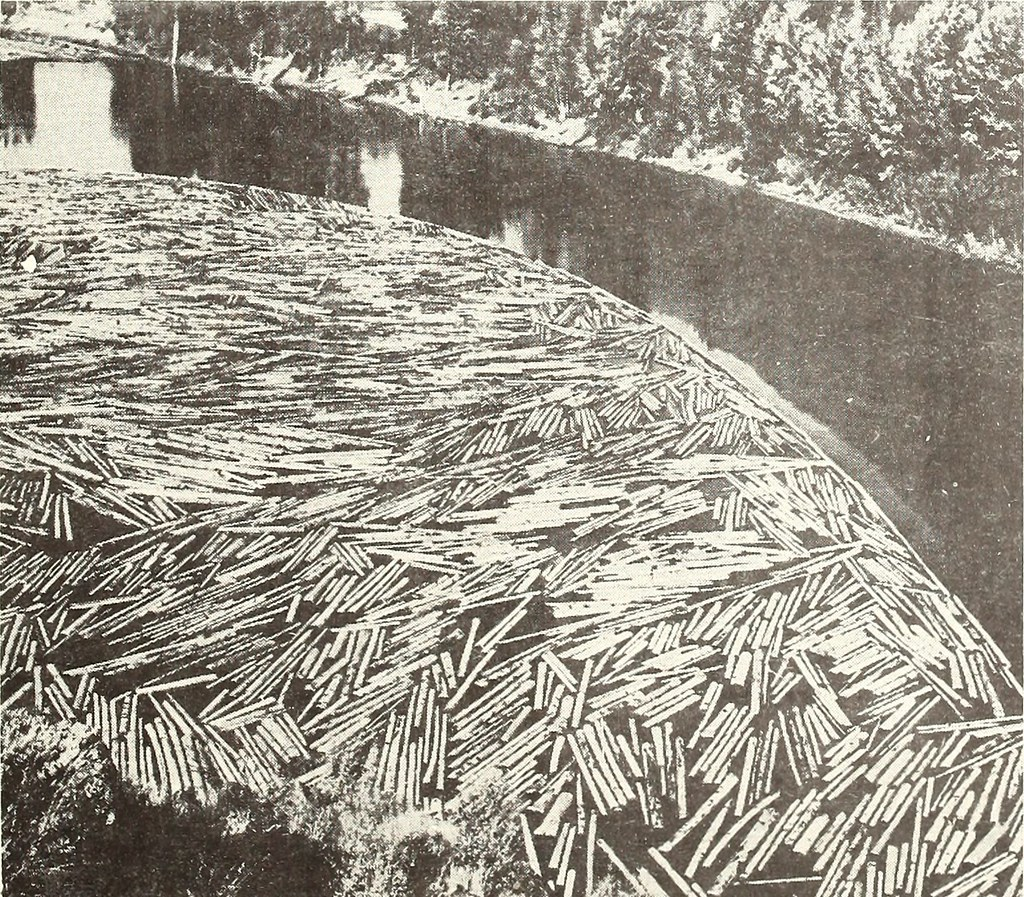 "Image from page 598 of ""Collected reprints, Essa Institute for Oceanography"" (1966)"