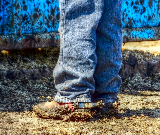 Boots,Mud, Spurs & Wire