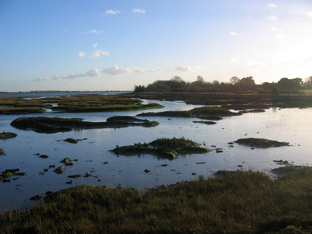 Marshes near West Thorney