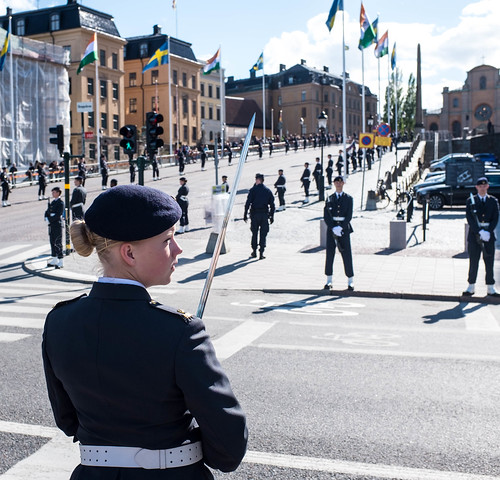 Swedish Guard | by Peter.Braden