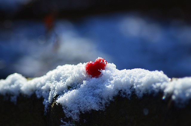 No winter is too cold when you have enough LOVE.