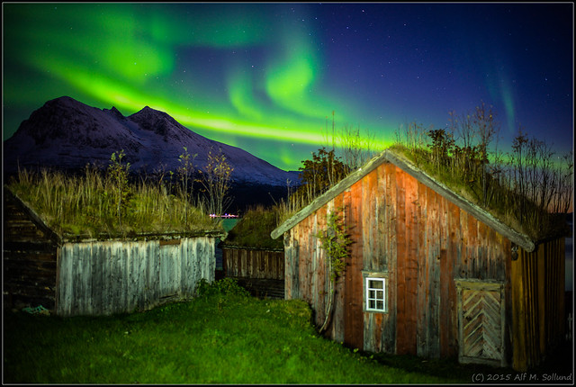 Houses_under_the_green_sky
