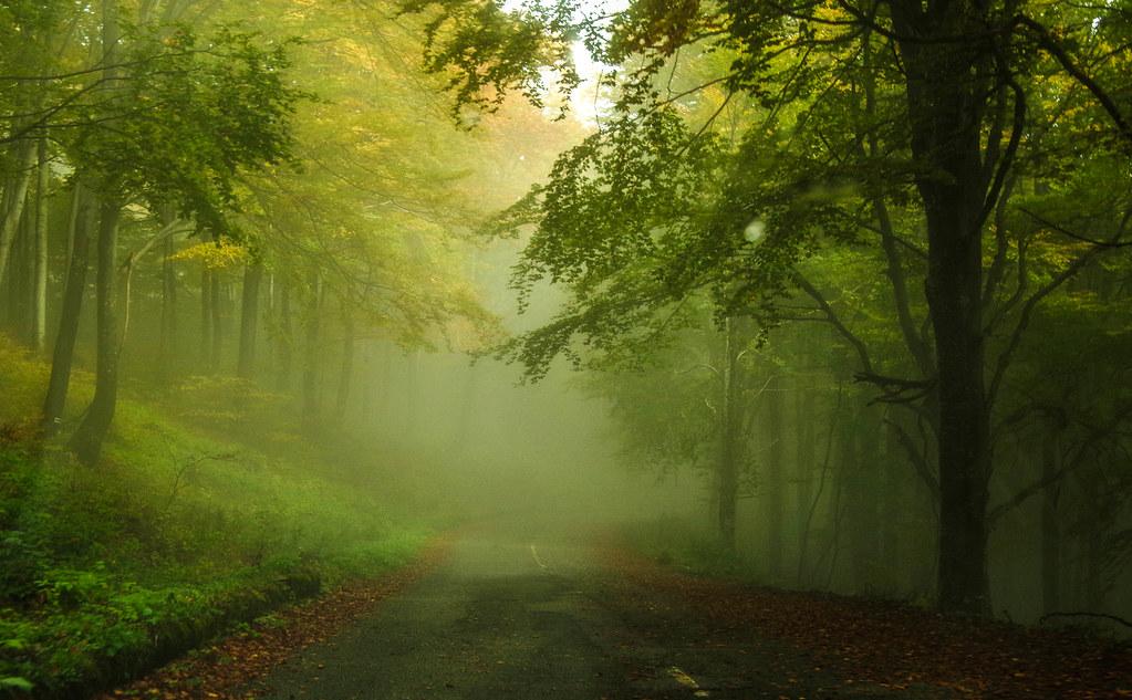 Road to The Buzludzha Monument - Bulgária