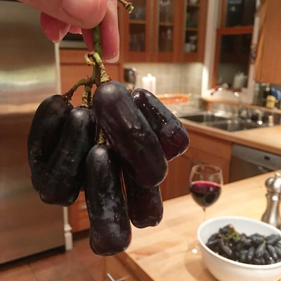 Just when you thought you knew every fruit in the produce aisle: Moon Drop grapes