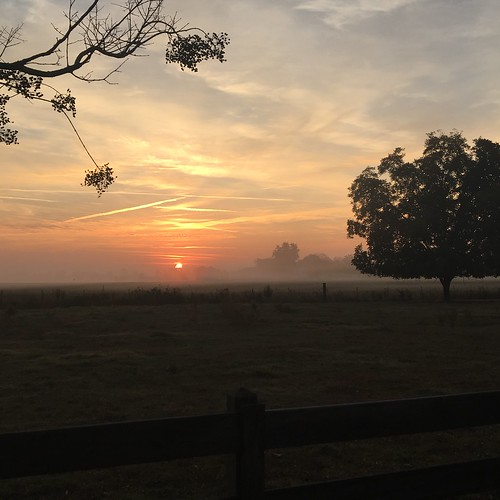 sunrise skyglory foggy alabama sky clouds hazelgreen farm farmlife