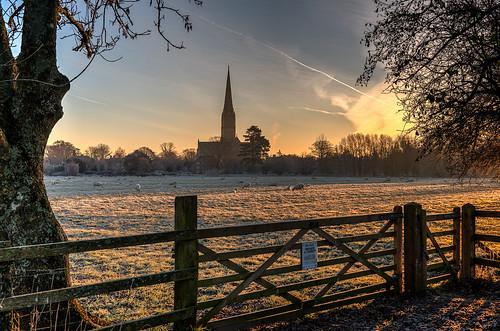landscape scenics architecture salisburycathedral dawn sunrise winter wiltshire unitedkingdom