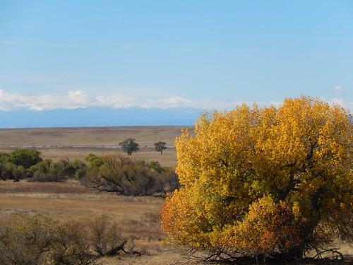 Colorado - zicht op Rocky Mountains vanaf I25 - 1