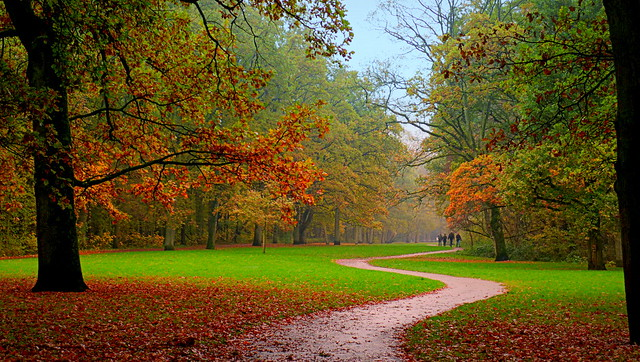A walk in a park ad Rotterdam