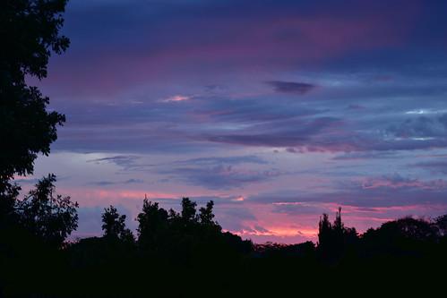 nikon d7200 dusk twilight trees storm sunset pinksunset tamronsp2470mmf28divcusd clouds bluesky bundaberg november 2016 500v20f topf25 1000v40f