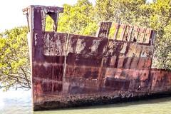 SS Ayrfield Shipwreck-11
