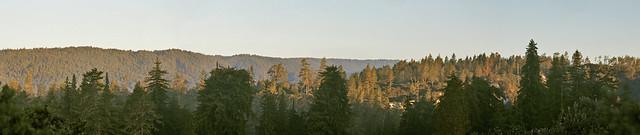 San Lorenzo Valley 9.3