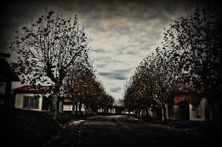 Road of abandoning