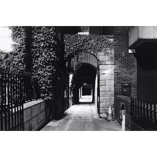 This little driveway adjacent to Stephen's Green looks beautiful at night 😍 ~~~~~~~~~~~~~~~~~~~~~~~~~~~~~~~ #dublin #ireland #blackandwhite #night #perspective #gate #entrance #architecture #arch #archilovers #visualsoflife #hashtag #symmetry | by tweetymonkey