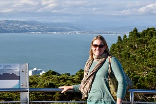 View from Mt Victoria | by ndimmock