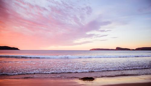 daybreak uminabeach sunrise nature australia nswcentralcoast newsouthwales earlymorning nsw beach centralcoastnsw umina photography dawn oceanbeach waterscape outdoors centralcoast seascape water purple