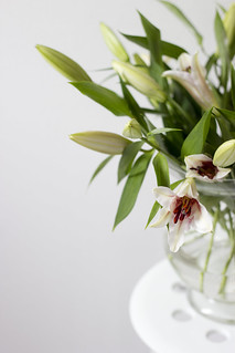 lilies | by Teresa Micheile Henderson