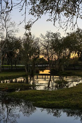 texas springcreek fieldstore wallercounty sunset silhouttes bridge creek stream trees tributary water lake wyojones np