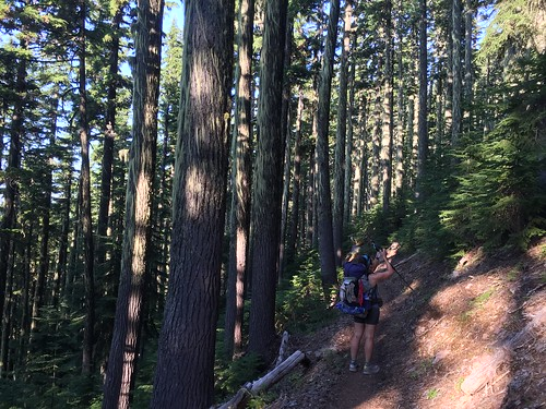 PCT: Day 128