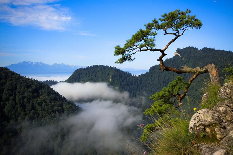 Pieniny Mountains / Pieniny