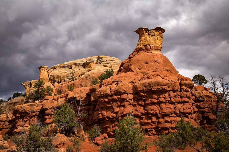 Sand Canyon Sandstone