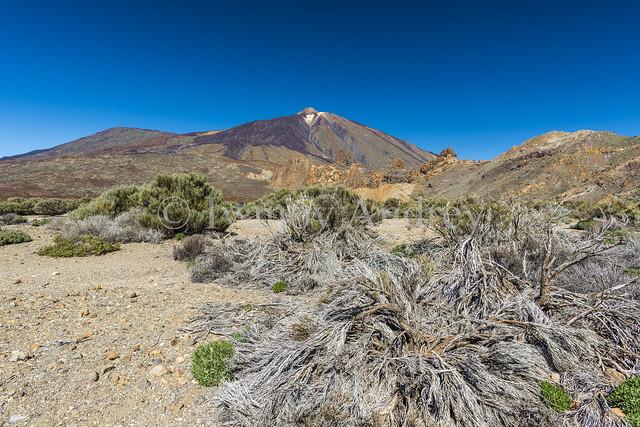 The Caldera of the volcano Teide