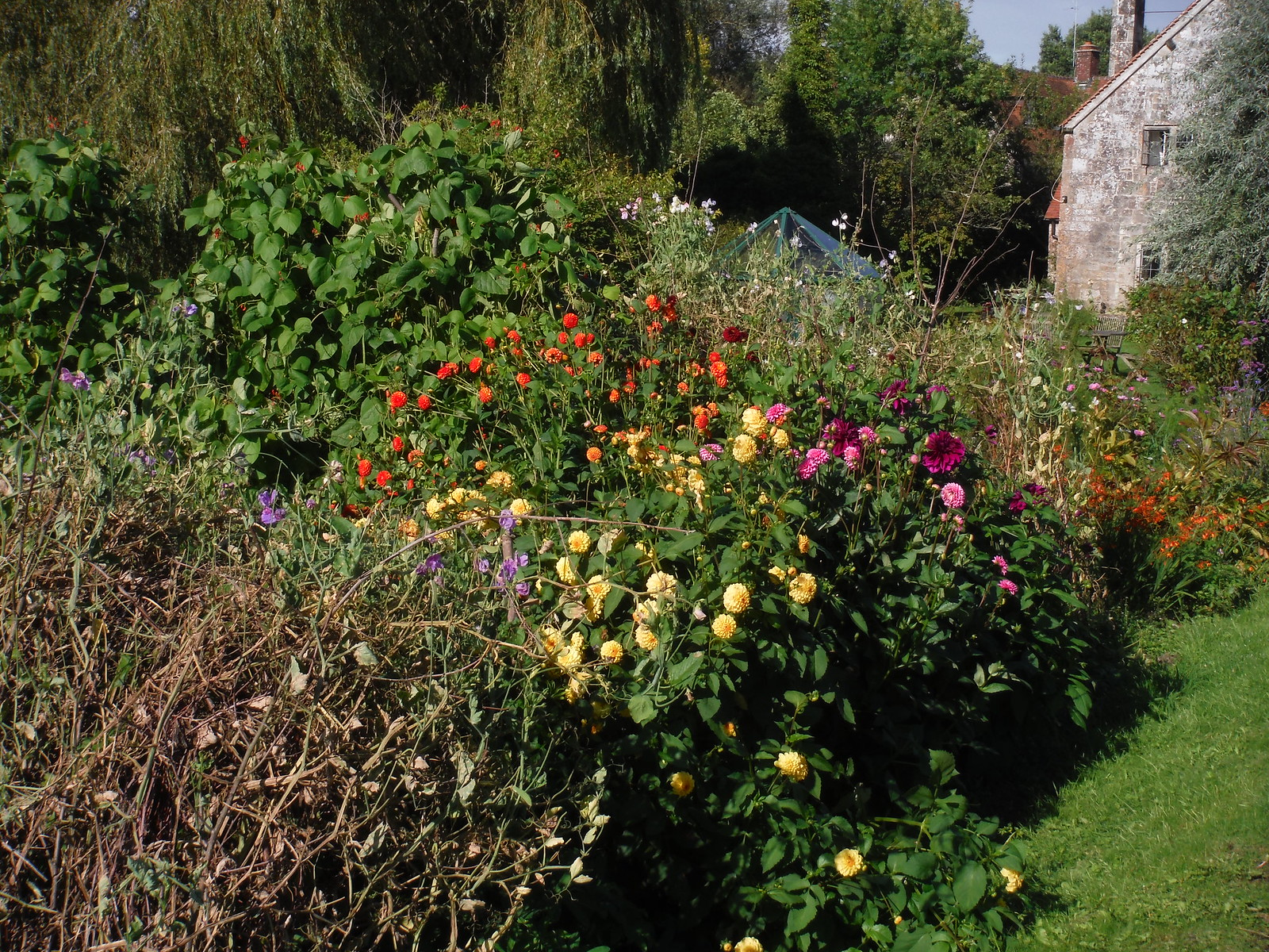 Garden Detail, Tisbury Mill (I) SWC Walk 248 Tisbury Circular via Hindon