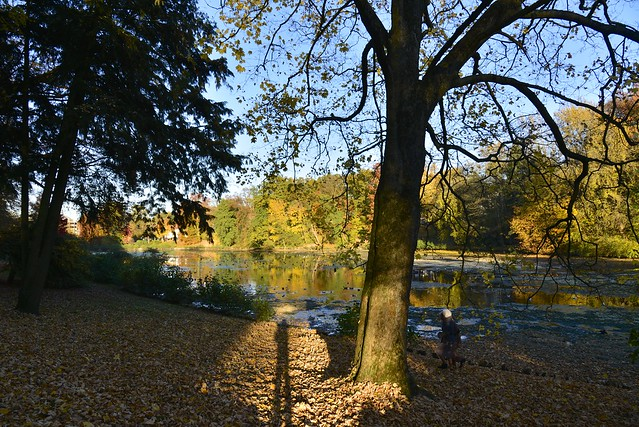 Le long de l'étang Tenreuken