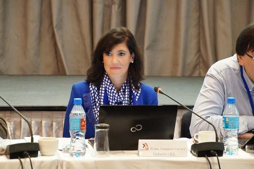 圖04能源部門聯絡人Diana Junquera Curiel報告國際能源近況的全球回顧