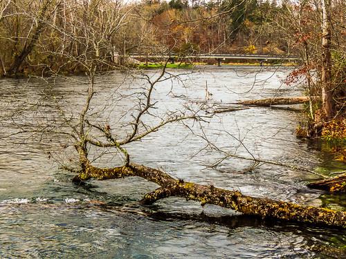 dam southforkholstonriver osceolaisland southholstondamsouthholstonreservoirtennesseetnweirlake