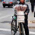 CHINA-2011_0836