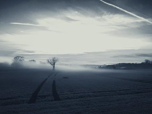 winter sunset sky blackandwhite bw sun tree field fog landscape deutschland abend sonnenuntergang nebel feld himmel eifel smartphone filter sw landschaft sonne hdr acker iphone