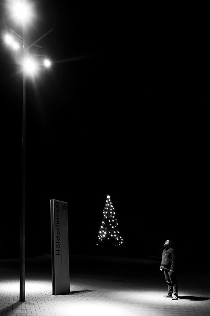Like Light To A Fly XI - Christmas Edition