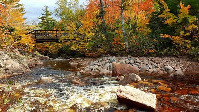 Autumn Colors On The Mary Ann River